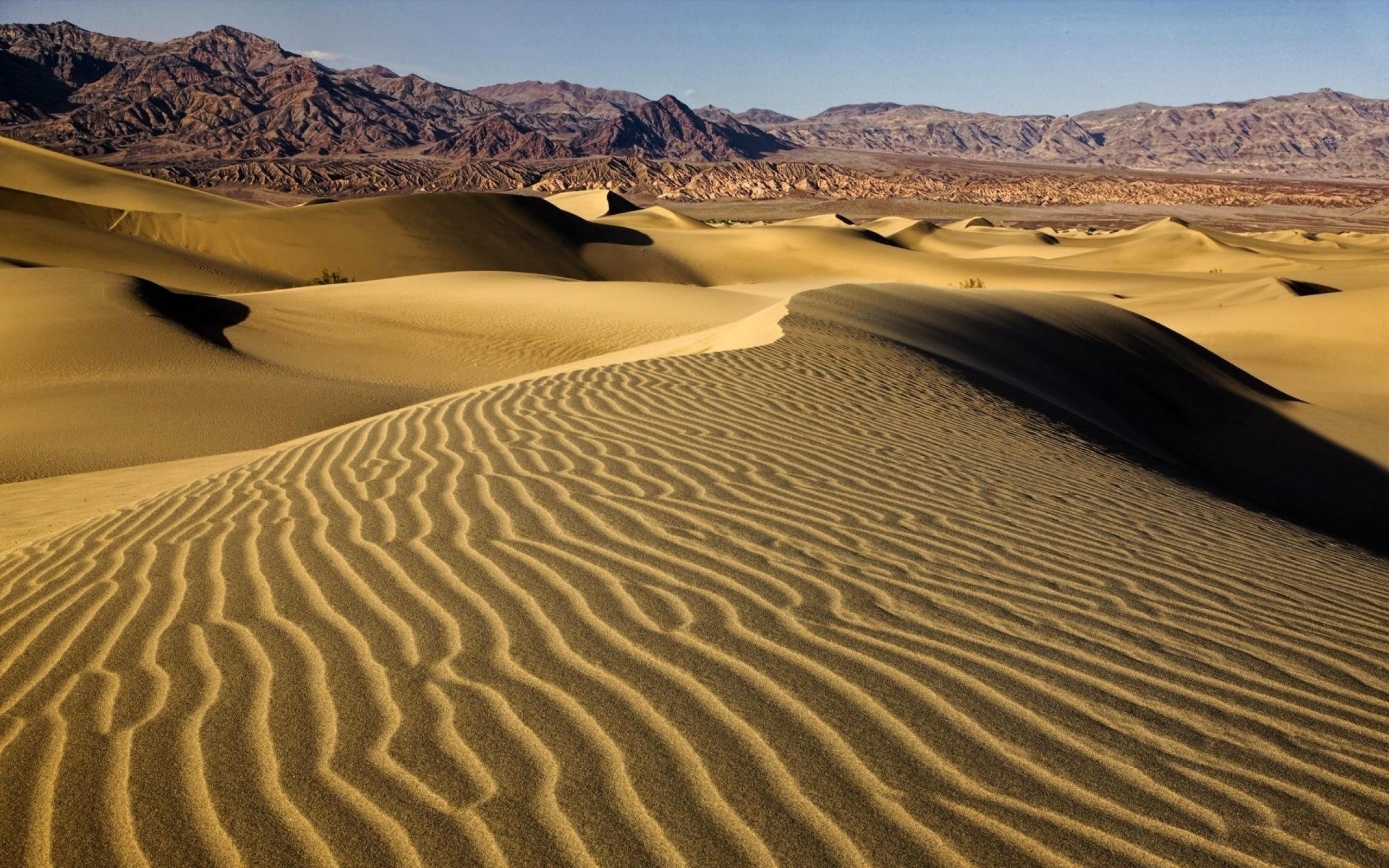 مصر تطرح مزايدة عالمية لبحث واستكشاف النفط في الصحراء الشرقية
