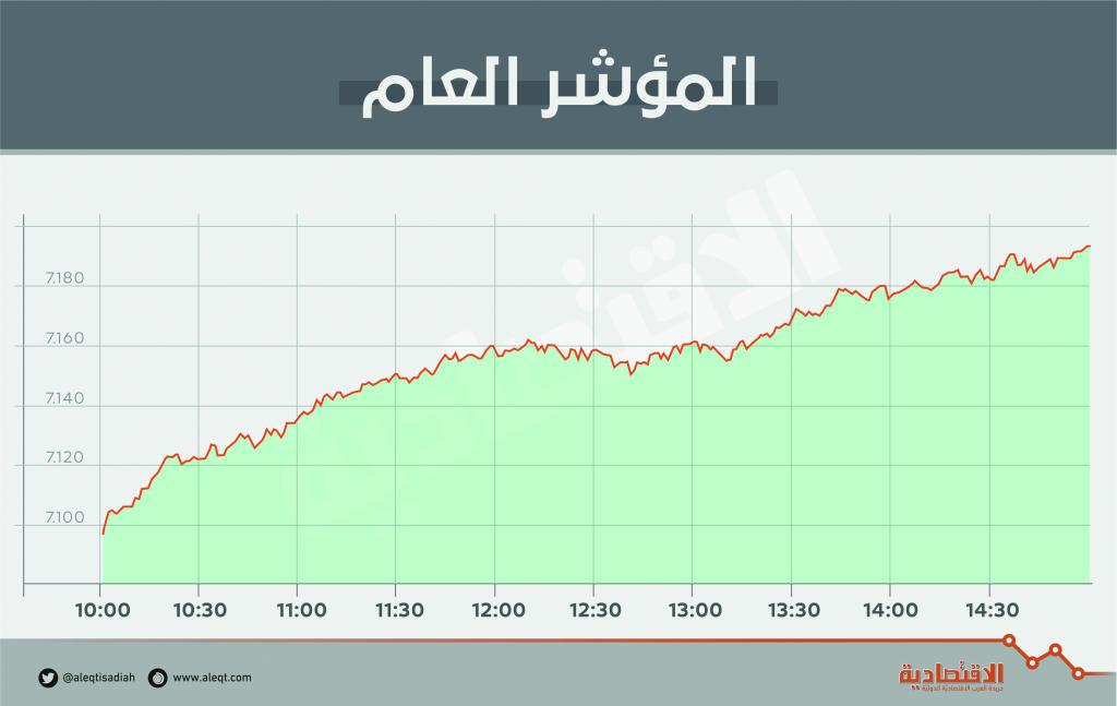الأسهم السعودية تستبق الميزانية بمكاسب 19 مليار ريال في قيمتها السوقية   صحيفة الاقتصادية