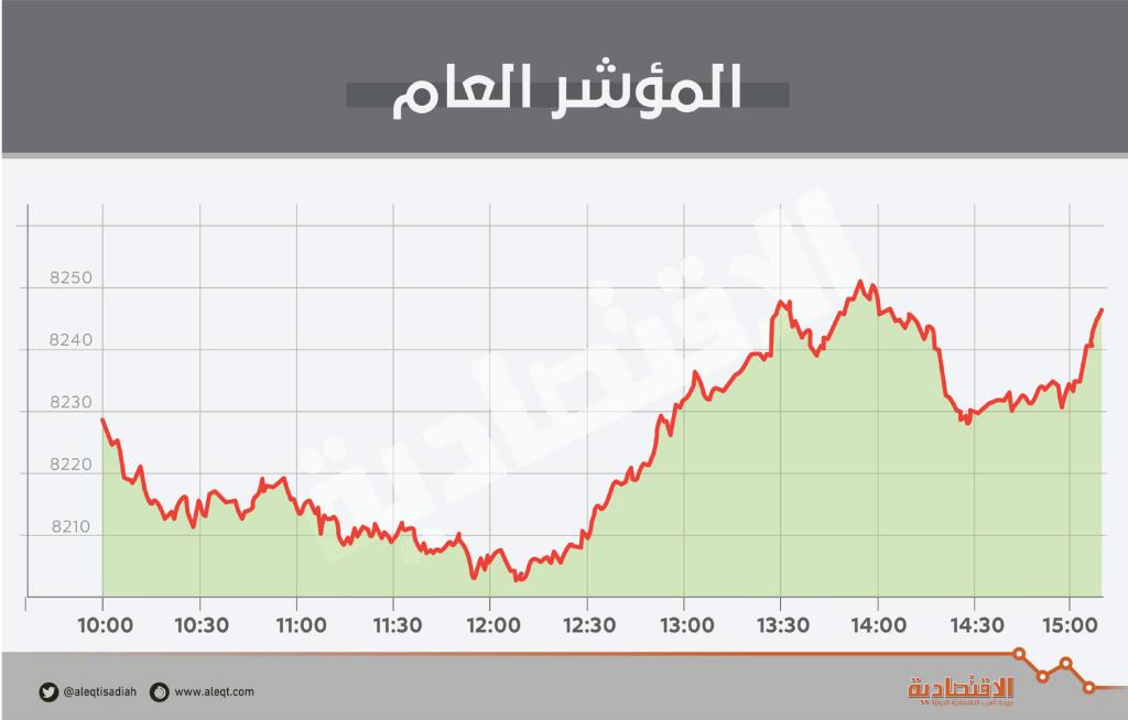 بدعم «المواد الأساسية» .. الأسهم السعودية تعود للربحية رغم تدني السيولة   صحيفة الاقتصادية