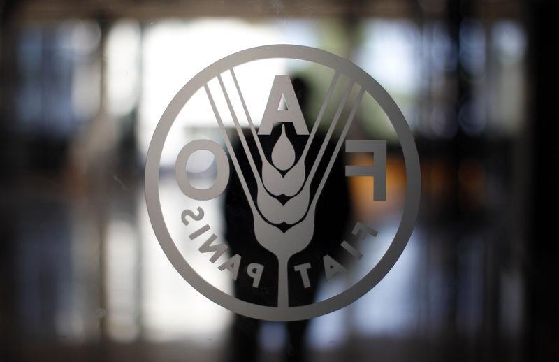 فاو: أسعار الغذاء العالمية تنخفض في نوفمبر لأدنى مستوى في أكثر من عامين