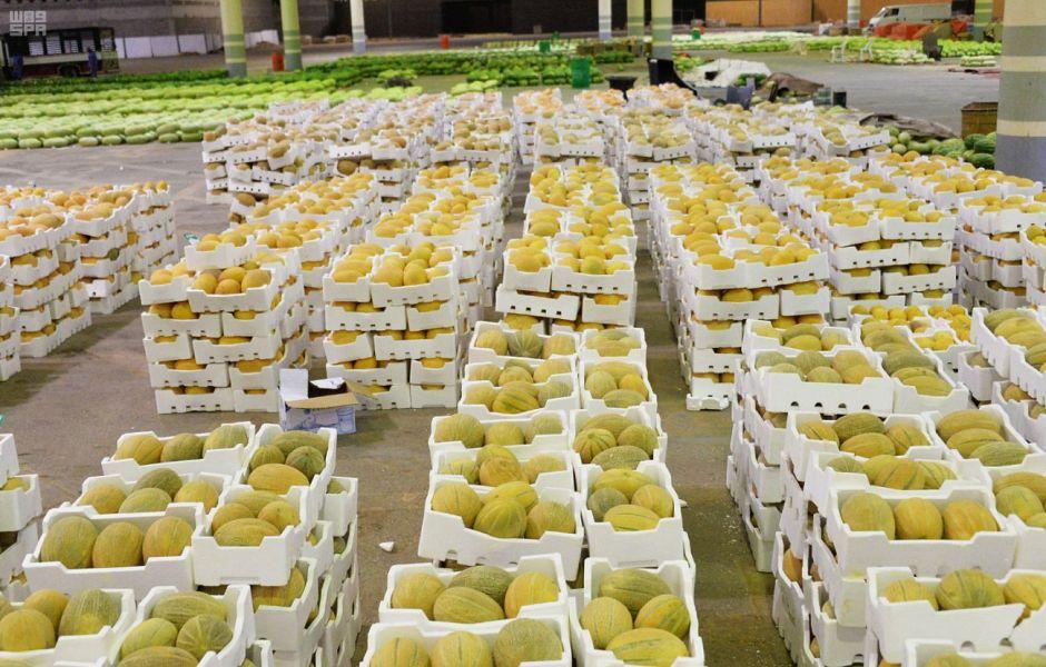 بداية الموسم مزرعة القصيم ترفد 1335056-1071999161.j