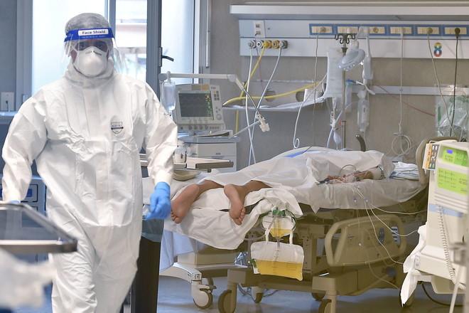 العالم يسجل أعلى حصيلة إصابات يومية بكورونا منذ بداية الجائحة.. 660 ألف إصابة