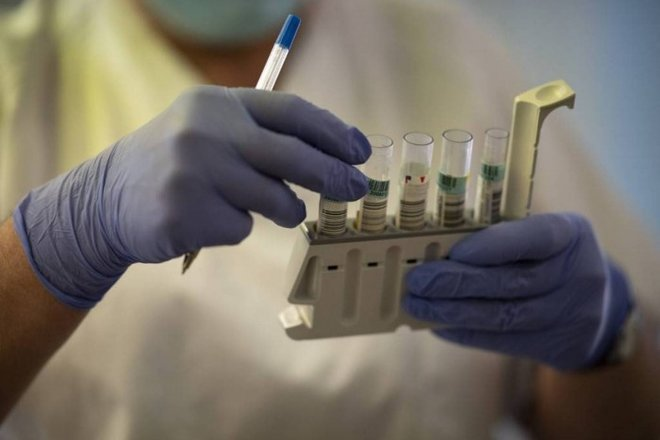 دراسة: الأجسام المضادة المتولدة نتيجة للسلالة الجنوب إفريقية ربما تحمي من سلالات أخرى