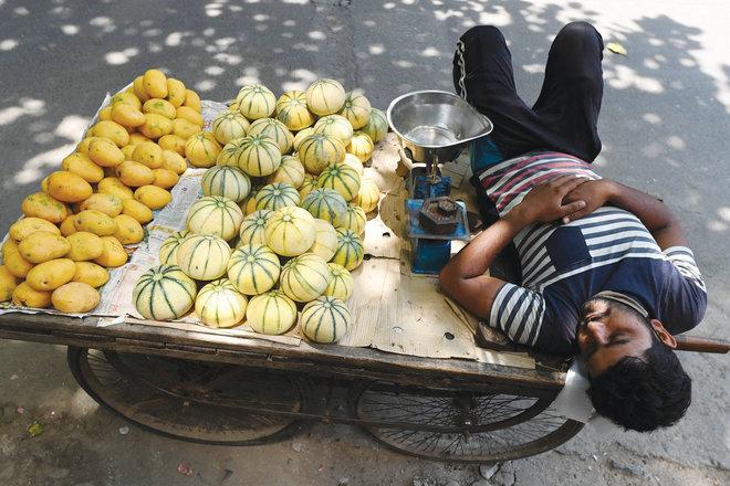 بائع فواكه ينام فوق عربته بجانب طريق في مدينة نيودلهي الهندية