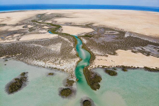 البحر الأحمر للتطوير تصدر تقريرها الأول للاستدامة وتستعرض إنجازاتها البيئية والاقتصادية والاجتماعية
