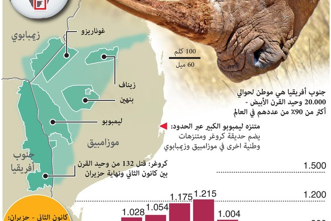 عمليات قتل وحيد القرن تتزايد بعد انتهاء قيود كوفيد