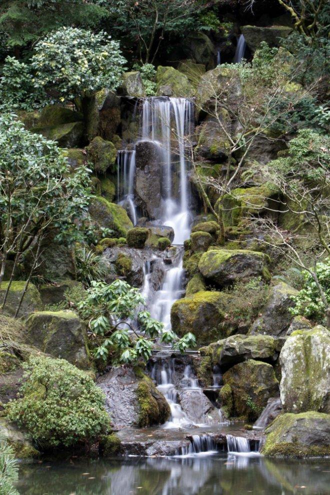 حدائق بورتلاند  اليابانية 342129_83011