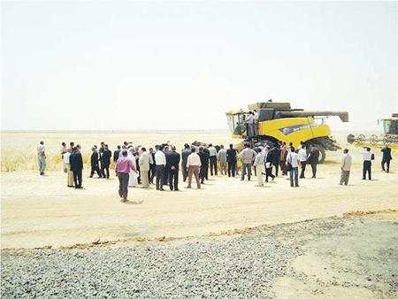 «الراجحي الدولية» تقطف أولى ثمار الاستثمار الزراعي الخارجي في مصر