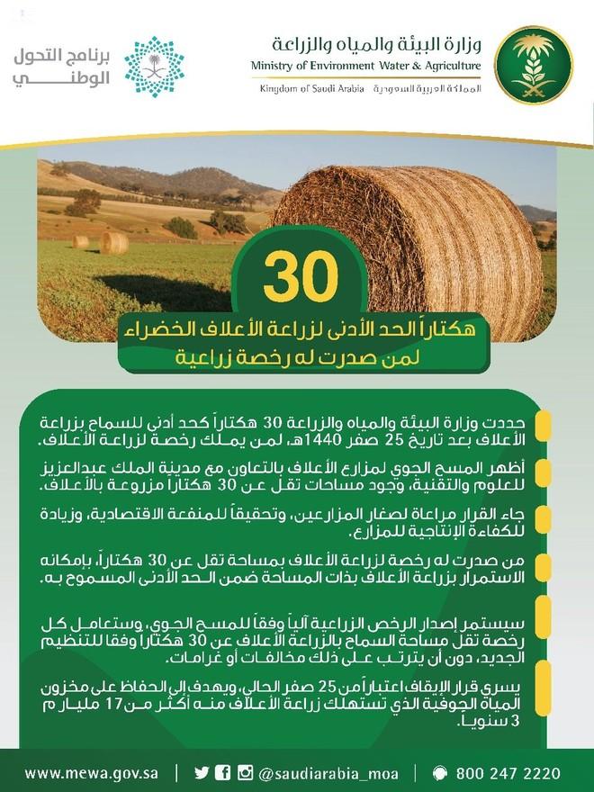 البيئة 30 هكتارا الحد الأدنى المسموح لزراعة الأعلاف الخضراء لمن صدرت له رخصة زراعية صحيفة الاقتصادية