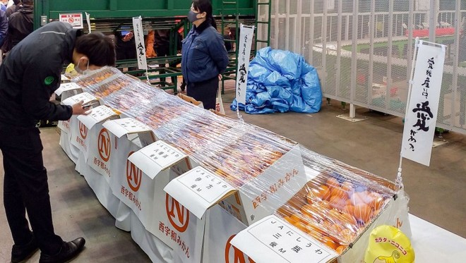 صندوق برتقال يباع بحوالي 10 آلاف دولار في اليابان