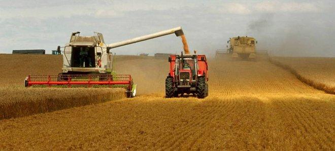 الجائحة جرس إنذار.. تعطل سلاسل التوريد العالمية يدفع 270 مليونا إلى شفا المجاعة