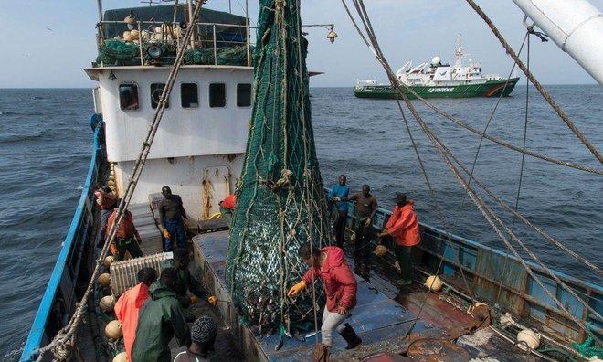 سد من الخلافات يواجه أعضاء منظمة التجارة في مفاوضات مصائد الأسماك