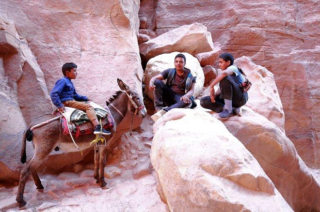 في مدينة البتراء الأثرية الخالية من السياح الحيوانات الناقلة تتضور جوعا