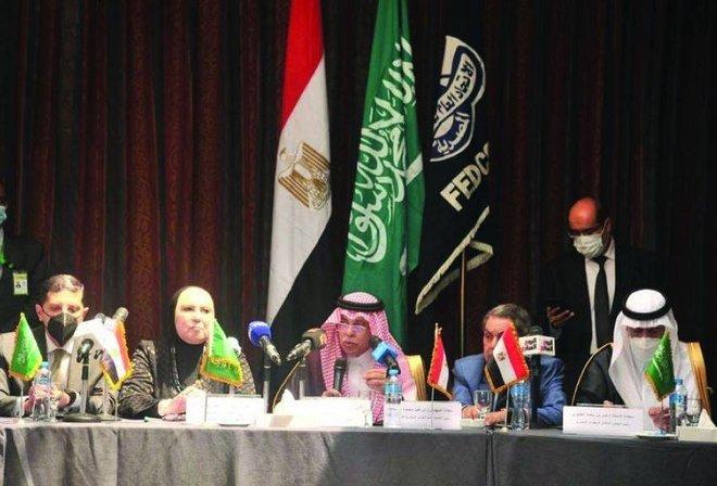 خطة سعودية طموحة لدعم الشركات الراغبة في الدخول إلى السوق المصرية