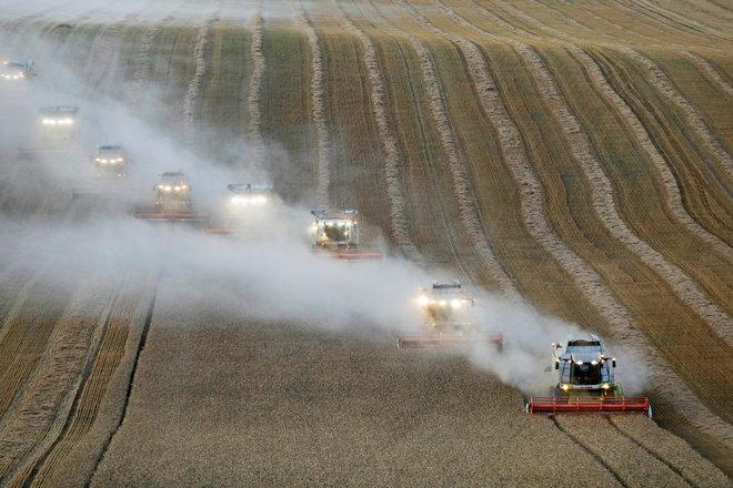 حملة بوتين لترويض أسعار المواد الغذائية تهدد قطاع الحبوب