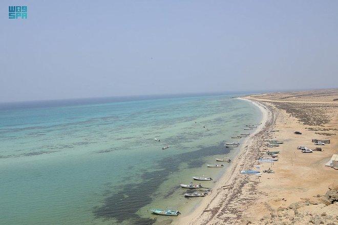 90 جزيرة.. تسجل أرخبيل فرسان في برنامج الإنسان والمحيط الحيوي