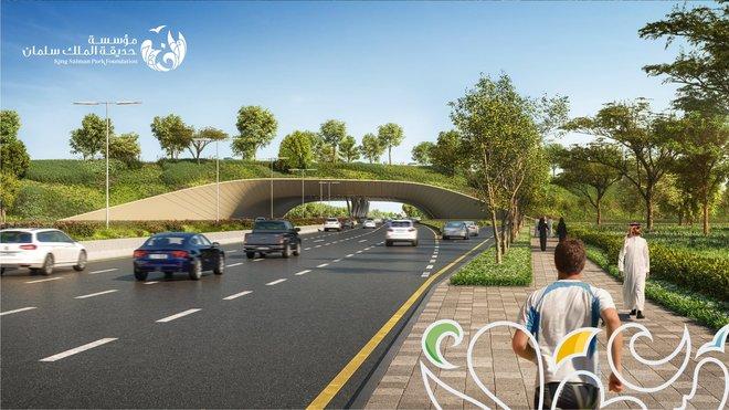 ترسية عقود بـ 3.8 مليار ريال على عدد من الشركات لتنفيذ أجزاء من مشروع حديقة الملك سلمان