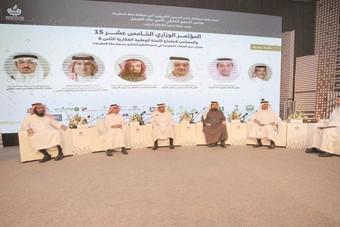 إشراك القطاع الخاص في تنمية عقارات الدولة واستثمارها
