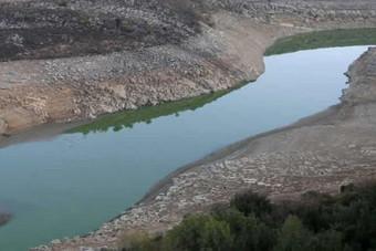 البنك الدولي يوقف تمويله لمشروع سد بسري المثير للجدل في لبنان