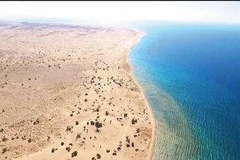 البحر الأحمر : القيمة الإجمالية للعقود الموقعة حتى الآن 7.5 مليار ريال