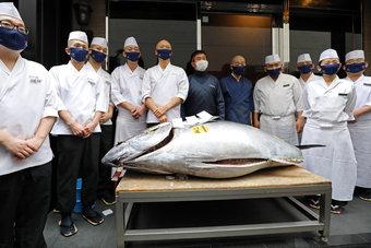 سمكة تونة تباع بأكثر من 200 ألف دولار بمزاد في اليابان