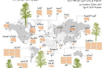 كل فرد حول العالم مسؤول عن اختفاء عدد من الأشجار
