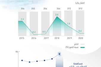 ارتفاع مشاركة الخدمات الحكومية في الناتج المحلي إلى 14.7 %