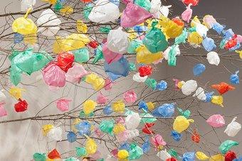 النفايات .. معرفة مكسورة تعوق التقدم