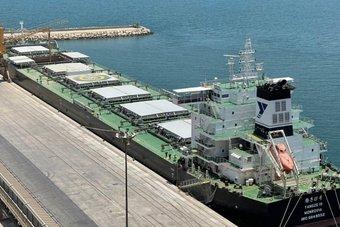 المملكة تستقبل أول باخرة قمح من إنتاج الاستثمار السعودي بالخارج لهذا العام