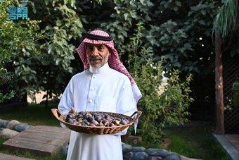 السياحة الزراعية في مرتفعات الباحة وأبها والطائف الخيار الأفضل للراحة والهدوء