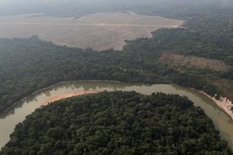 تحول كبير في النظام البيئي.. غابة الأمازون تتحول مصدرا لثاني أكسيد الكربون