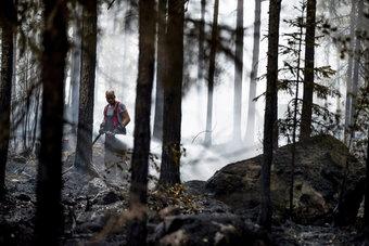 فنلندا تكافح أسوأ حريق غابات منذ 50 عاما