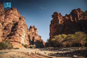 تبوك .. سحر الطبيعة وعبق التاريخ في صيف السعودية