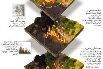 كيف تكافح الدول حرائق الغابات؟
