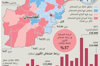 ارتفاع إنتاج الأفيون في أفغانستان