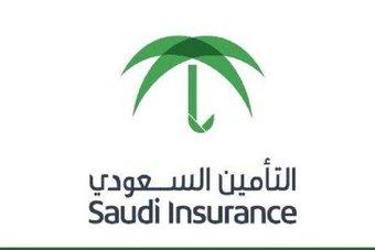29 شركة توفر الاحتياجات التأمينية وضمان الحقوق للأفراد والمنشآت التجارية