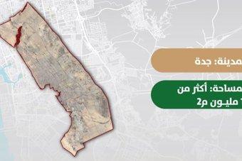 «الأراضي البيضاء»: تسجيل أرضين بمساحة 15.3 مليون متر مربع في جدة